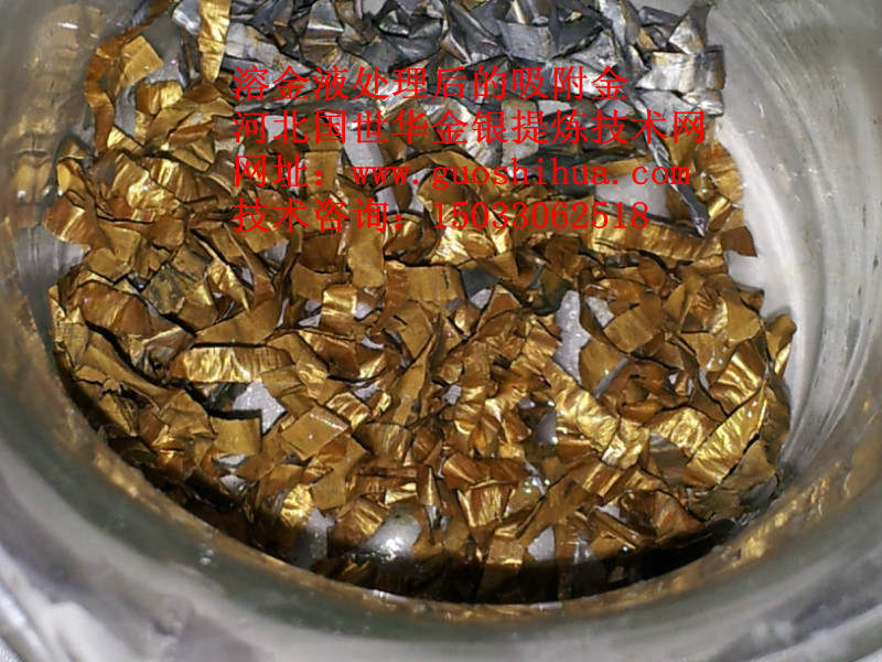 含金溶液后吸附金